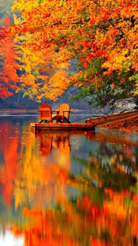 Autumn Leaves reflecting over a lake with two chairs sitting on  platform .. I would be spending my mornings with a good cup of coffee and a warm blanket ...