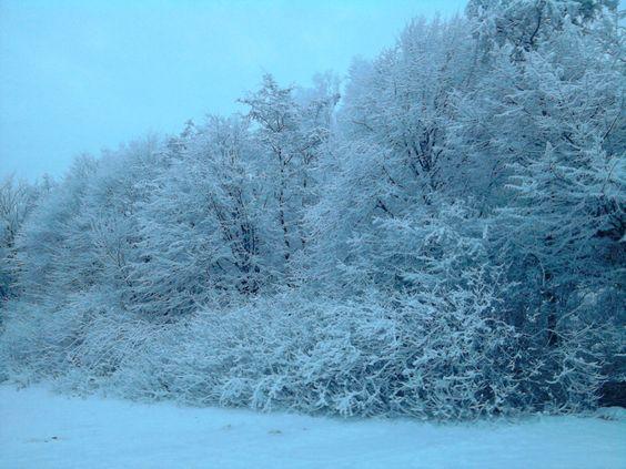 Winter 2010 von xX.Jan.Xx