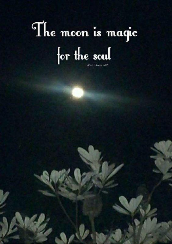 """ItâÃÂ'âÂ'¬ÃÂ'âÂ""""¢s nice to relax on the grass under the moon."""