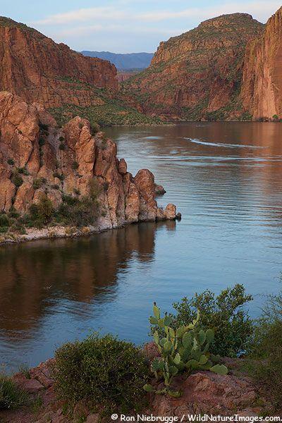 Pinterest the world s catalog of ideas for Canyon lake az fishing