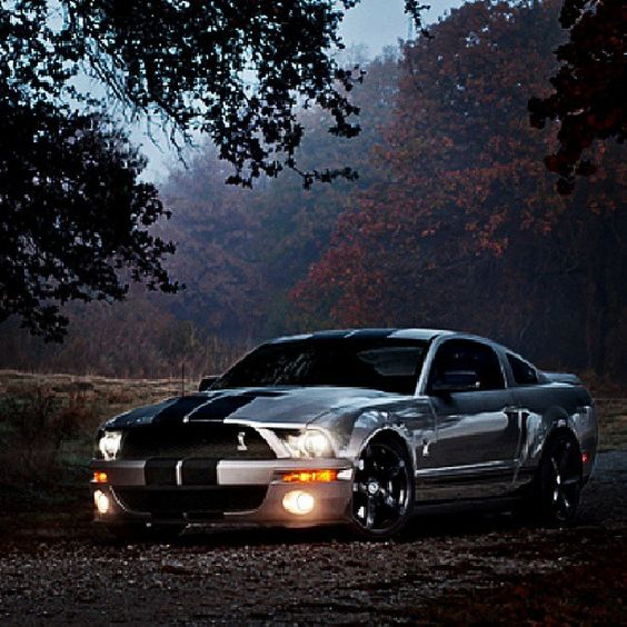 Ford Mustang Shelby GT500... Good Lookin' Ride Right There