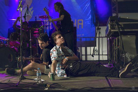 Porcas Borboletas www.facebook.com/eugalvao