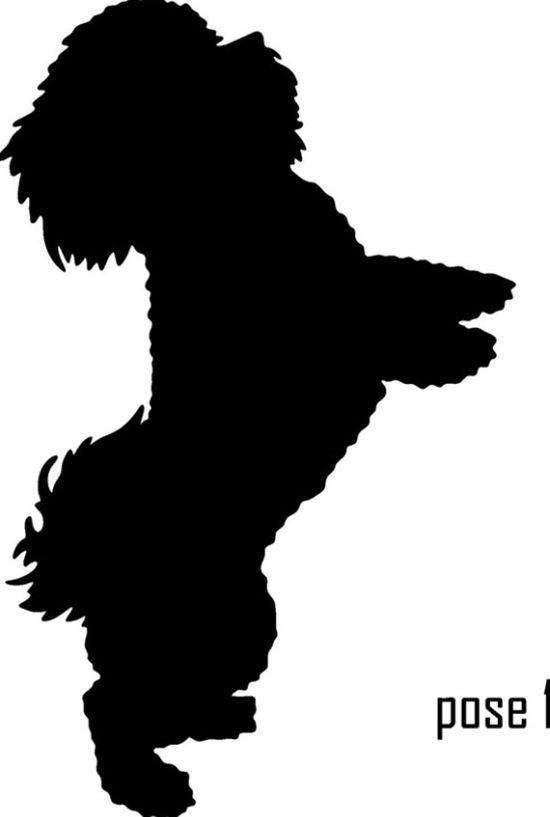 Bichon Dog Silhouette Bichon Bichon Frise