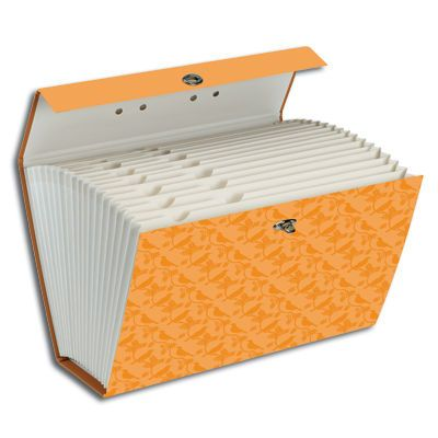 Fashionable expanding file boxes are great for desktop filing or for files on the GO.  www.facebook.com/cluborganomics  www.twitter.com/smeadorganomics  www.youtube.com/smeadorganomics  www.Gplus.to/Smead  www.pinterest.com/smeadorganomics