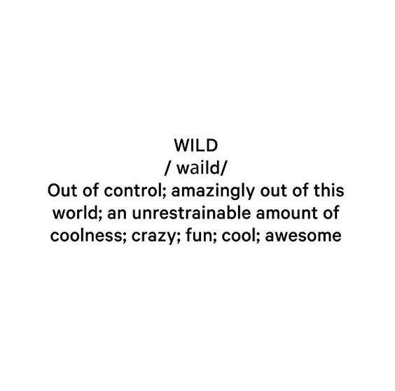 Definition of Wild!