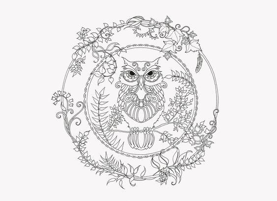 Coloring Coloring Pages And Owl Coloring Pages On Pinterest