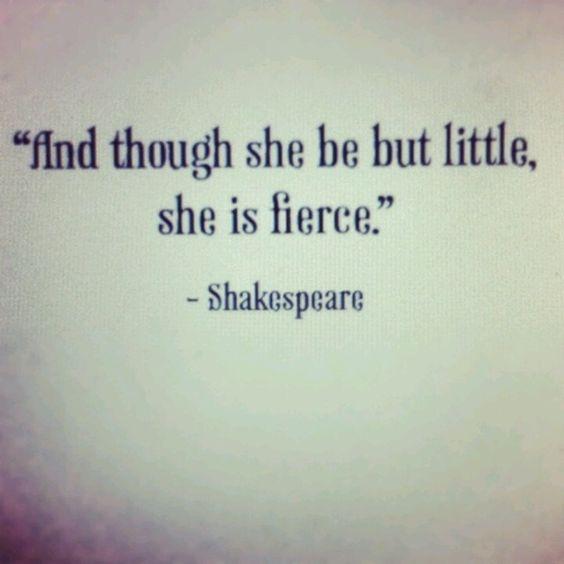 Fierce is a marvellous word.