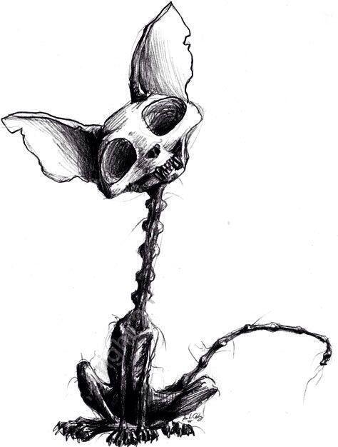 fail cat skeleton doodle - photo #1