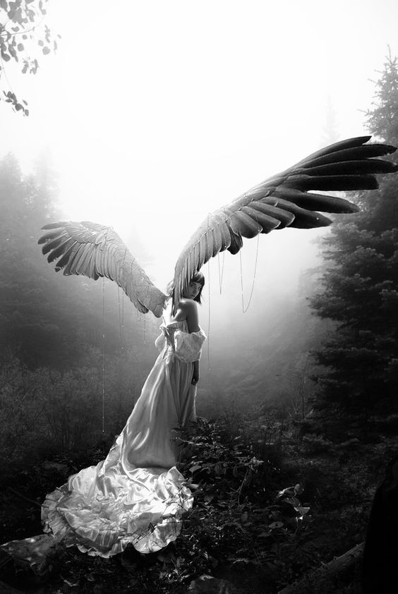 angel ~ ღ ~ Skuwandi: