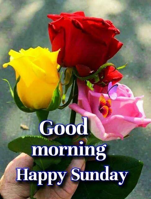 Good Morning America Good Morning Happy Saturday Good Morning Happy Sunday Good Morning Image Quotes Good morning sunday hd wallpaper