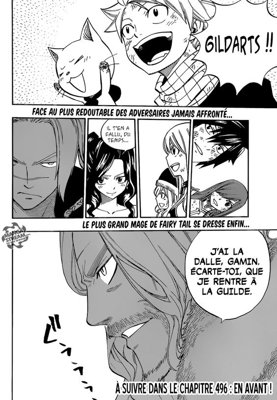 Scan Fairy Tail 495 VF page 24
