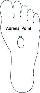 Reflexology for Adrenal Glands.. balancedwomensblog.com