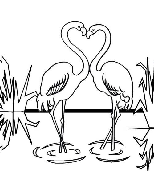 read morebest flamingo coloring page