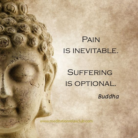 Pain is inevitable. Suffering is optional. ~Buddha: