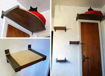 Create you own Kitty Corner Climber!