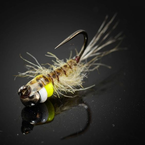 Fly fish food fly tying and fly fishing nymphs fly for Fly fishing nymphs