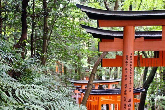 Kyoto - und was die Stadt so besonders macht   Rapunzel will raus