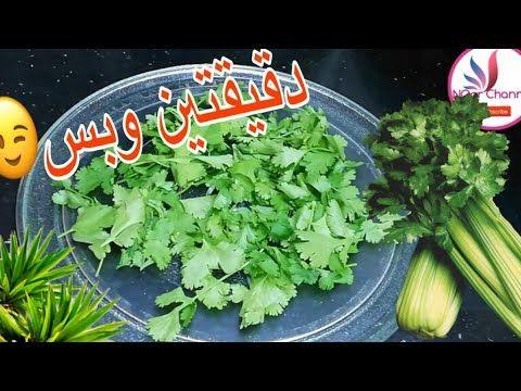 تجفيف الكرفس في دقيقتين وبس بقدونس كسبره شبت بطريقه تحفه جربوها Youtube Celery Food The Creator