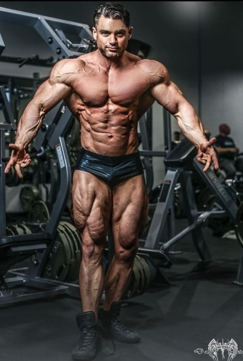 Creating The Perfect Muscular Physique