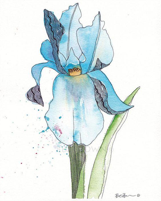Blue Iris Flower Watercolor Zentangle Art by CloudsofColourShop, $25.00