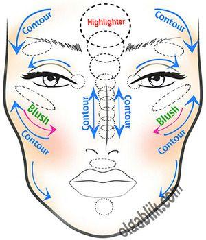 Contour and highlight diagram