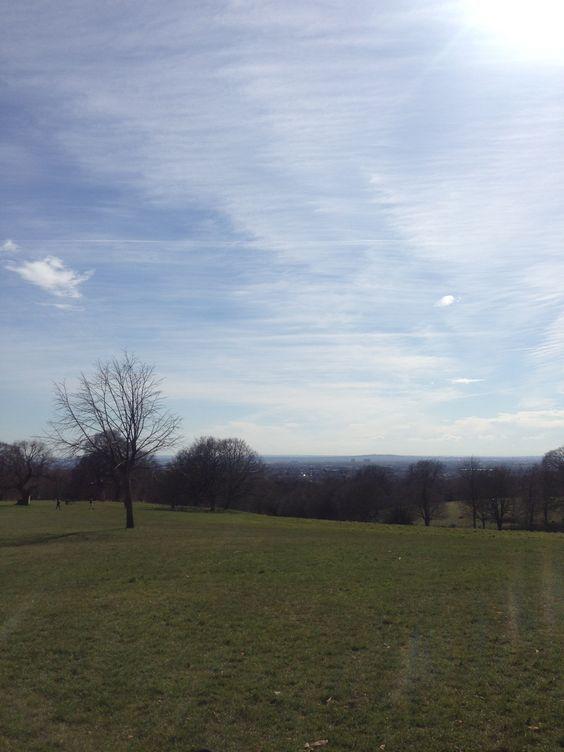 Bedfords Park