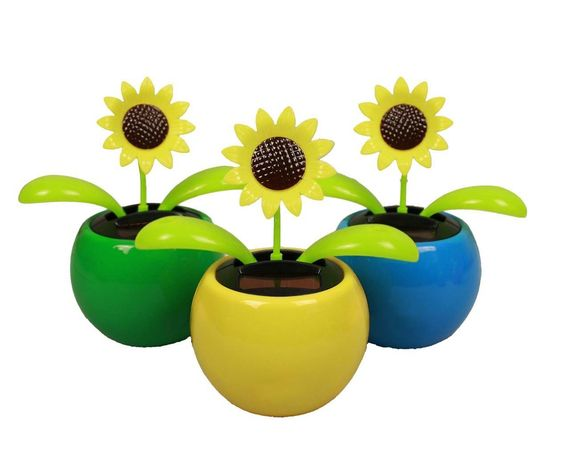 HAAC Solar Wackelblume Blume Sonne lachend: Amazon.de: Garten