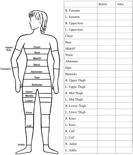 body measurements chart - socialmediaworks.co