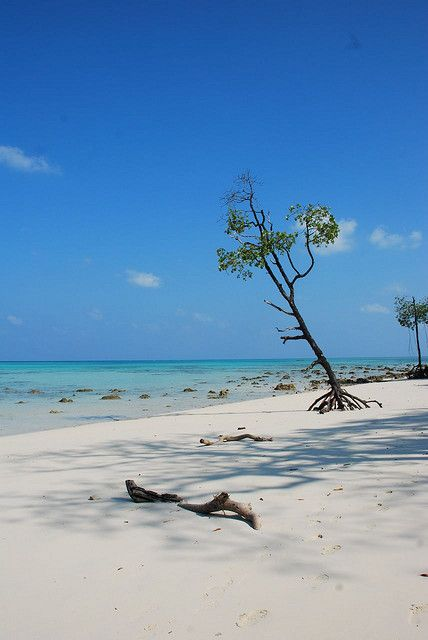 Havelock Island. Andamans India. Want to go here...