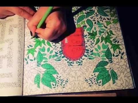 Sercret Garden Coloring Book: Secret Door