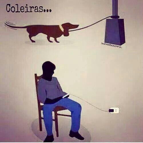 Coleiras... do cão... e do Homem...: