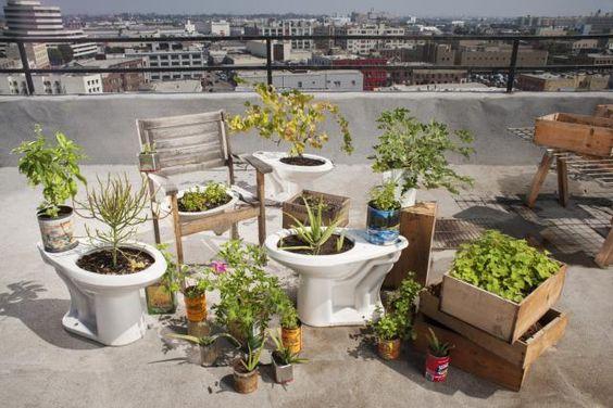 Jardines Creativos 12 Objetos Reciclados Convertidos En Maceta Taza De Baño Jardinería En Macetas Jardín Urbano