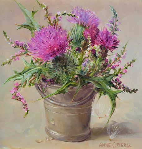 Thompsons Galleries | Anne Cotterill: