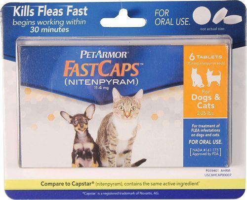 Oral Flea Medication For Cats Http Pets Ok Com Oral Flea Medication For Cats Cats 4355 Html