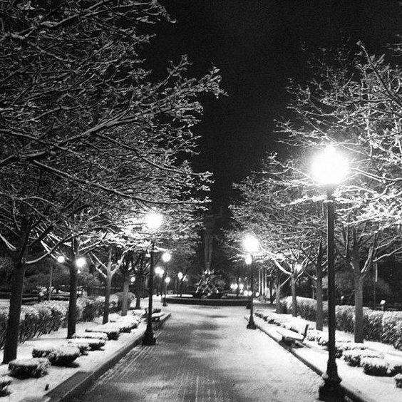 A City Snowfall,Winter 2012