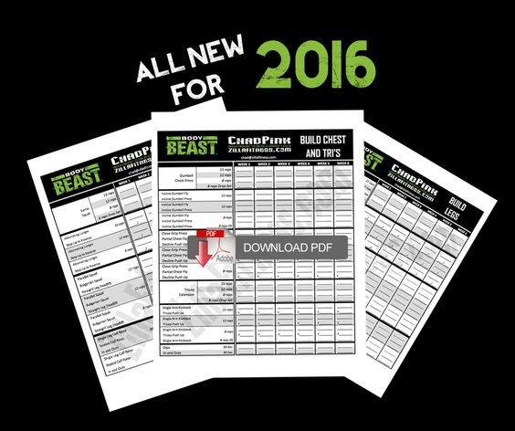 NEW Body Beast workout sheets for 2016