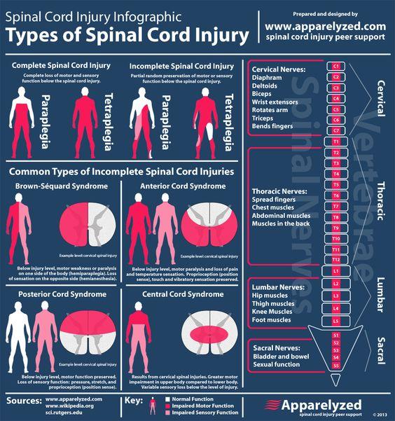 spinal cord injury nursing pdf