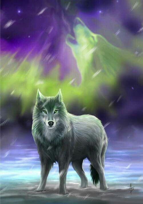 Rachel Henson Adli Kullanicinin Wolfsbane Panosundaki Pin Hayvanlar Hayvanlar Alemi Yagli Boya