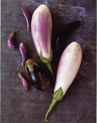 eggplant (bloom magazine)