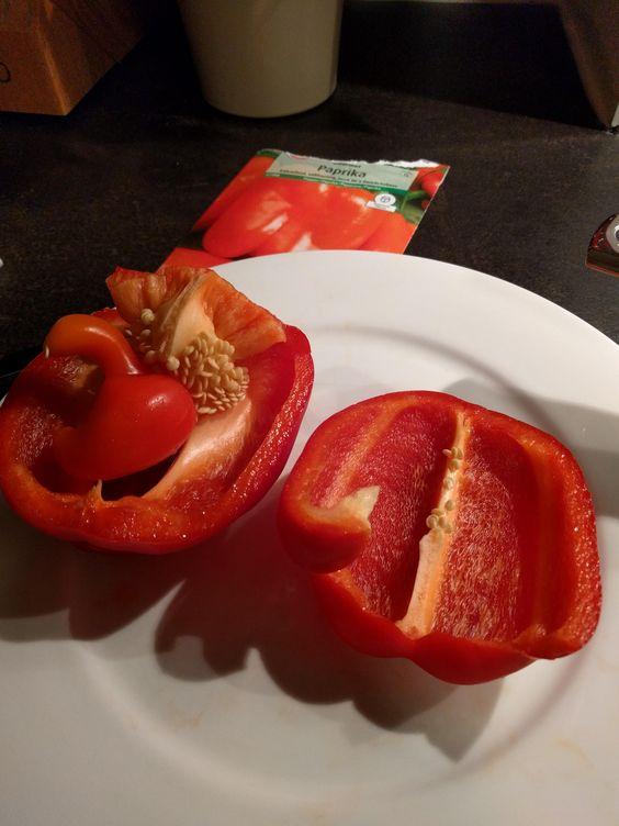 A Paprika in a Paprika