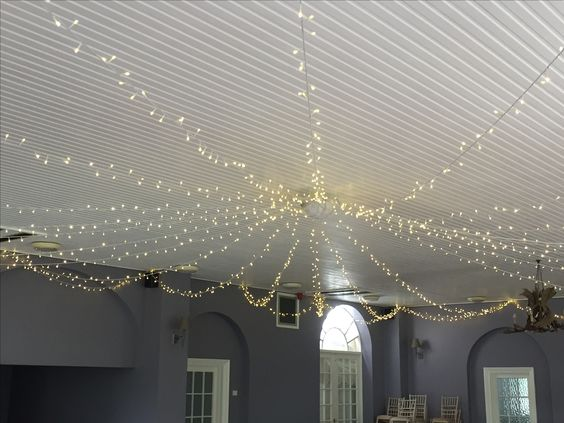 Fairy light canopy at Bridwell Park in Devon @bridwelldevon
