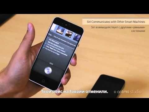 iPhone 5 + iPad mini