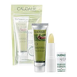 Caudalie - Beauty From The Vine. $15  This lip balm is amazing.