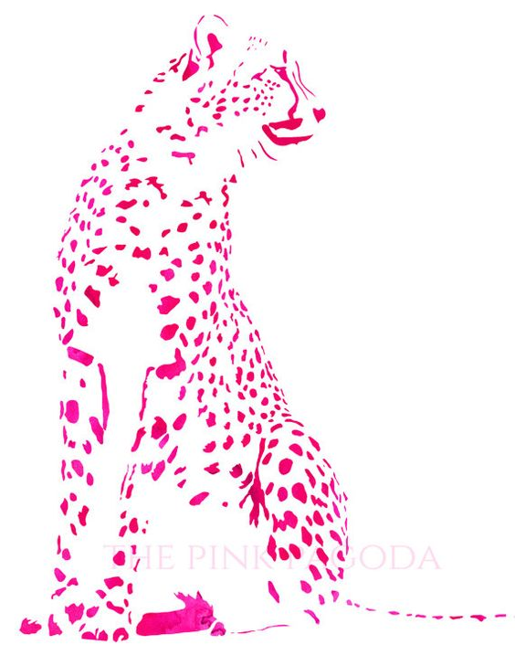 Cheetah in Pink