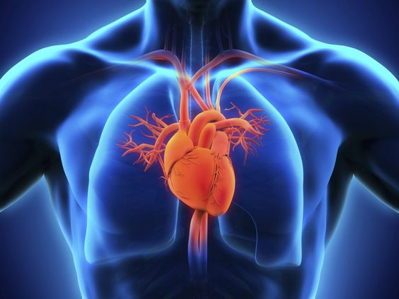 What is the Heart Surgery?