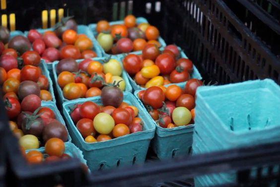 Cherry Tomato Galette