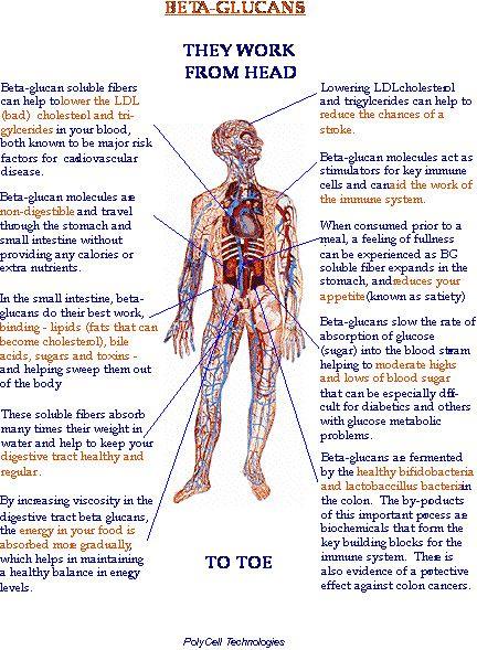Mit Hafer Diabetes und Hautleiden lindern