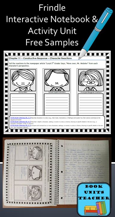 Free Samples from Frindle Interactive Notebook and Activity Unit