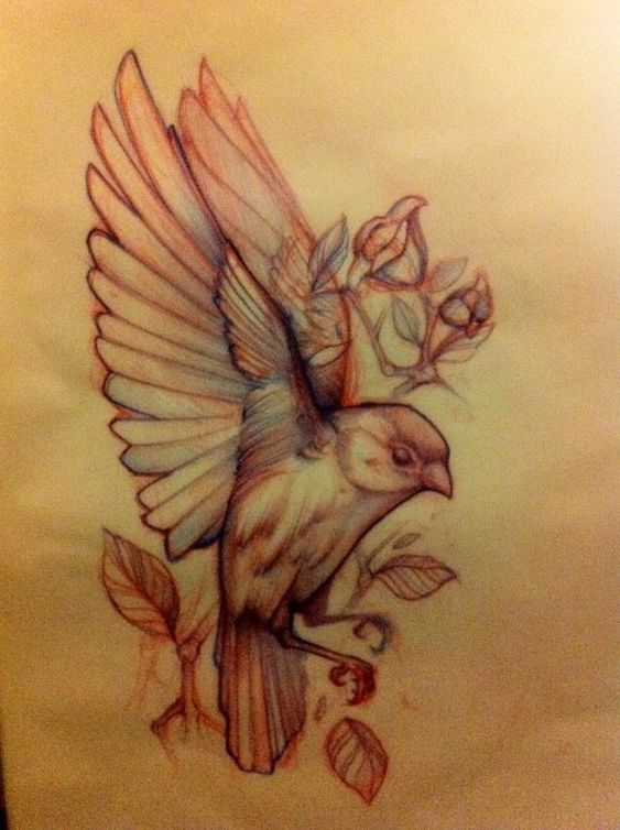 Bird Tattoo Sketch by peggy moberly
