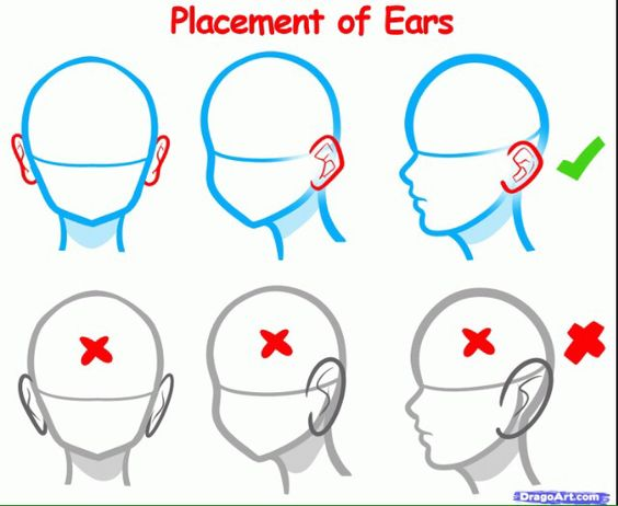 Ear placement
